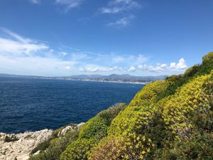 Cap Ferrat in Bloom Blue Walk Greece walking tour vacation