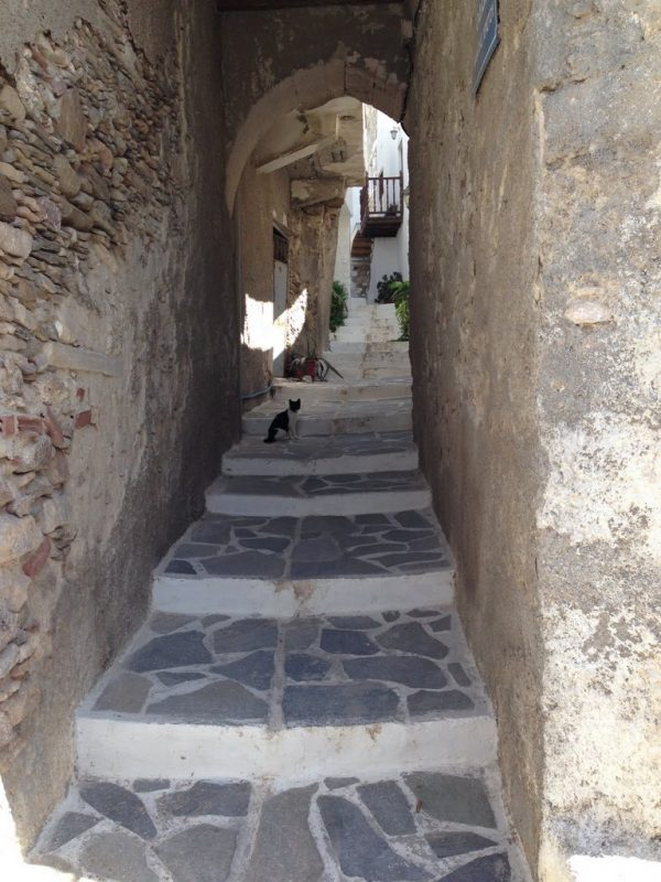 Narrow alley with cat in Naxos Greece European walking vacation art workshop