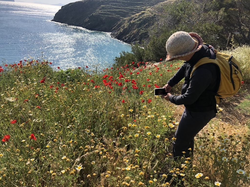 Woman taking picture of wild flowers and ocean in Greece travel photography workshop in Greece walking vacation