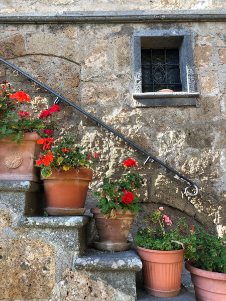 Flower pots on stone steps